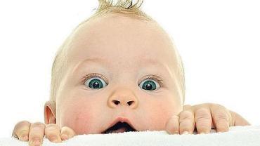 bebes--644x362--478x270